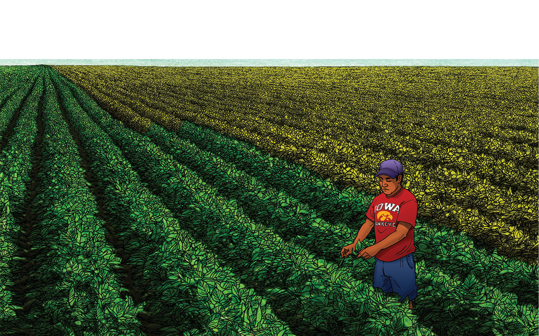 soygreen_b_1170